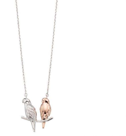 rose gold parakeet necklace jail dornoch